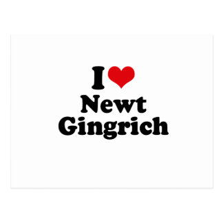 I LOVE NEWT GINGRICH POSTCARD