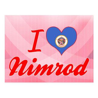 I Love Nimrod, Minnesota Postcards