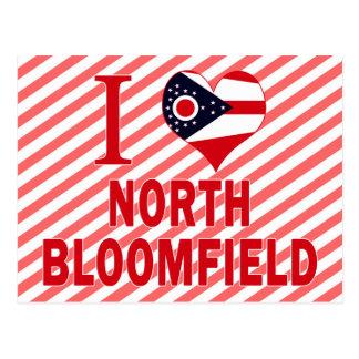 I love North Bloomfield, Ohio Postcard