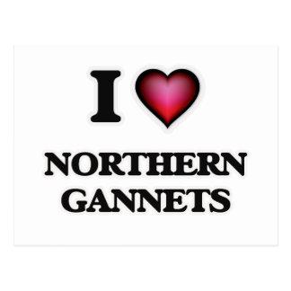 I Love Northern Gannets Postcard