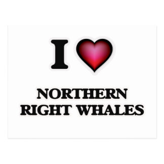 I Love Northern Right Whales Postcard