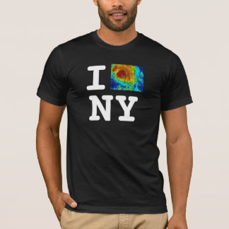 I love NY hurricane T-Shirt