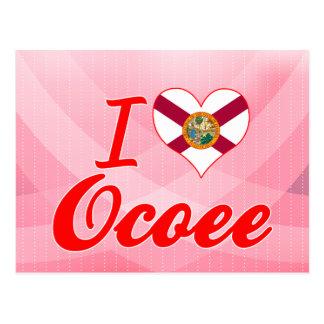I Love Ocoee Florida Postcard