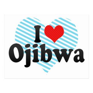 I Love Ojibwa Postcard