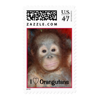 I Love Orangutans Animal Lover Charity Stamp