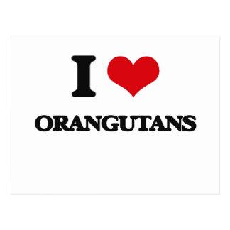 I Love Orangutans Postcard