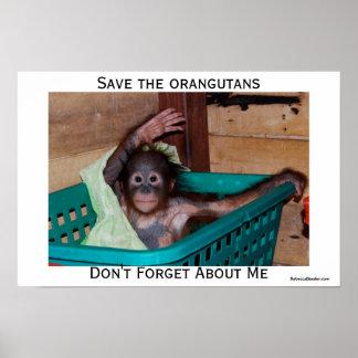 I Love Orangutans Posters