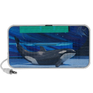I Love Orcas Speakers