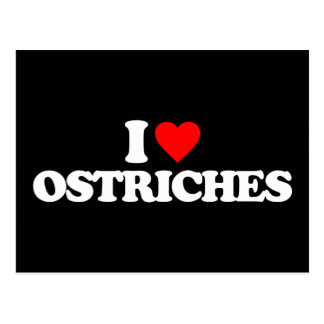 I LOVE OSTRICHES POSTCARD