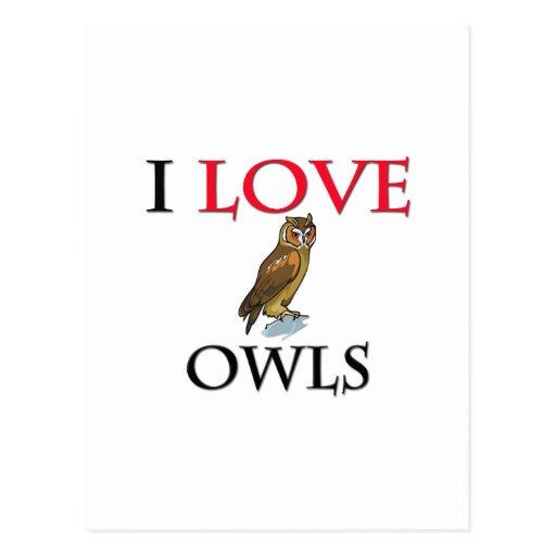 I Love Owls Post Card