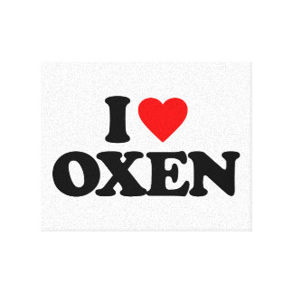 I LOVE OXEN STRETCHED CANVAS PRINT