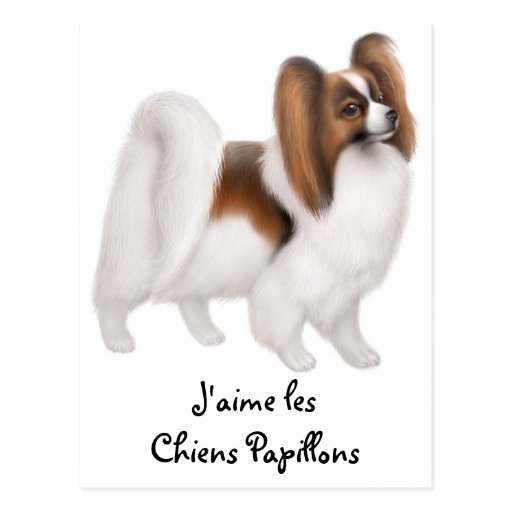 I Love Papillon Dogs in French Postcard