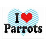 I Love Parrots Postcard