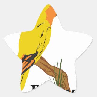 I Love Parrots Star Sticker