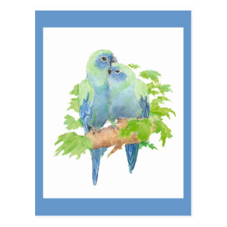 I love Parrots, Tropical Bird Collection Postcard