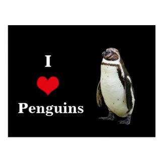 I Love Penguins - Postcard