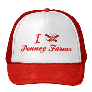 I Love Penney Farms, Florida Mesh Hat