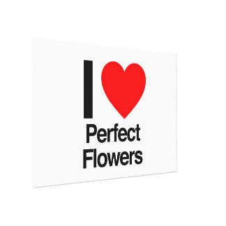 i love perfect flowers canvas print