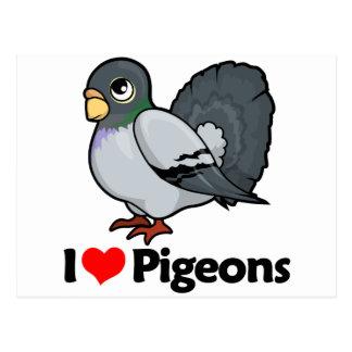 I Love Pigeons Postcard