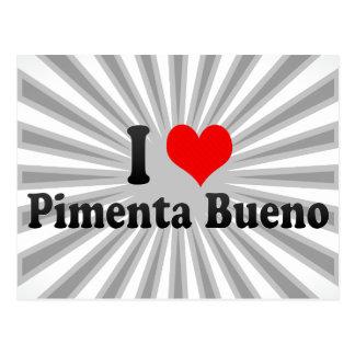 I Love Pimenta Bueno, Brazil Postcard