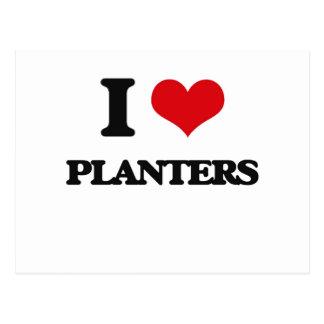 I Love Planters Postcard