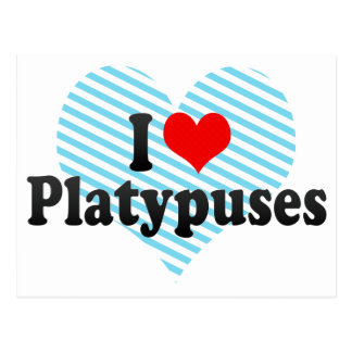 I Love Platypuses Post Card