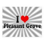 I Love Pleasant Grove, United States Postcard