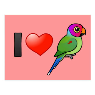 I Love Plum-headed Parakeets male Post Cards