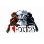 I Love Poodles Postcards