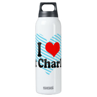 I Love Port Charlotte, United States Thermos Water Bottle