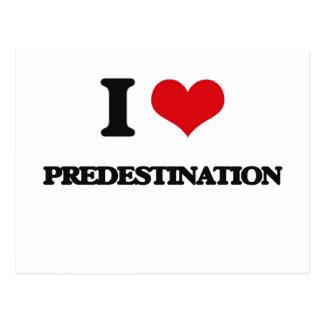 I Love Predestination Postcard
