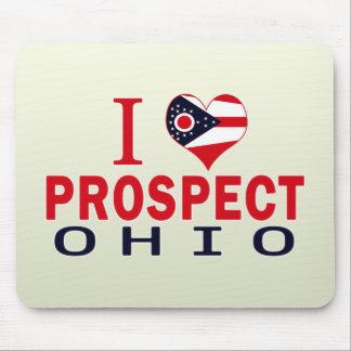 I love Prospect, Ohio Mouse Pad