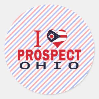 I love Prospect, Ohio Classic Round Sticker