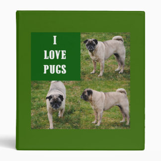 I Love Pugs Avery Binder