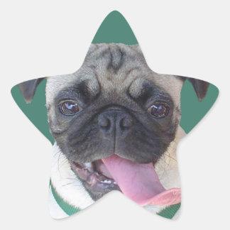 I Love Pugs! Star Sticker