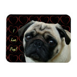 I Love Pugs with Hearts Flexible Magnet