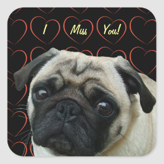 I Love Pugs with Hearts Square Sticker