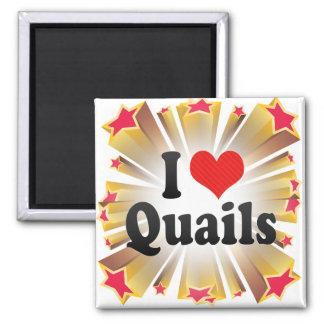 I Love Quails Magnets