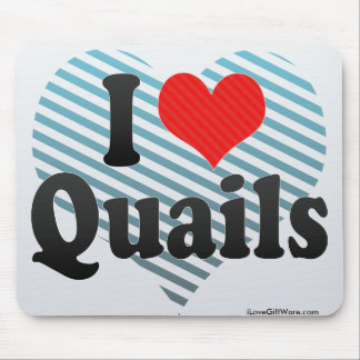 I Love Quails Mouse Pad