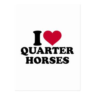 I love Quarter horses Postcard