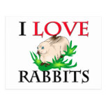 I Love Rabbits Post Cards