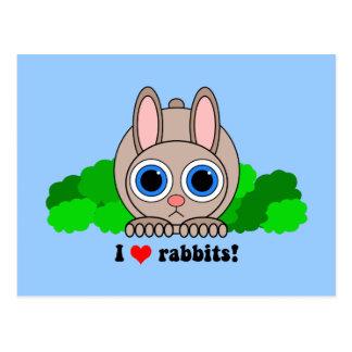 I love rabbits postcard