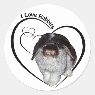 I Love Rabbits Sticker