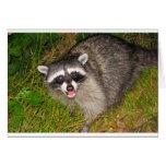 I Love Raccoons! Greeting Card