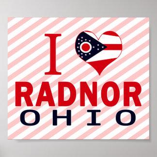 I love Radnor, Ohio Posters