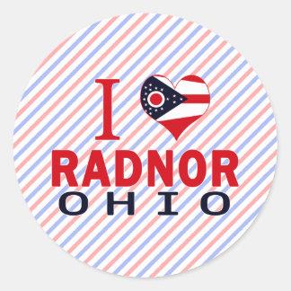 I love Radnor, Ohio Stickers