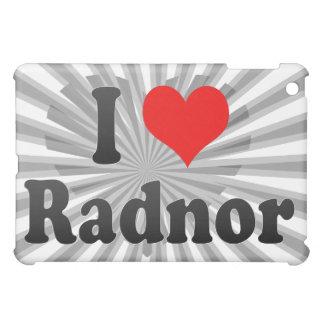 I Love Radnor, United States Case For The iPad Mini