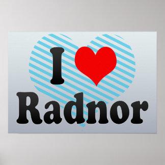 I Love Radnor, United States Poster