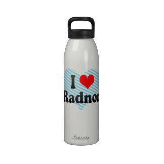 I Love Radnor, United States Water Bottles