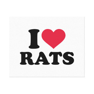 I love Rats Canvas Print